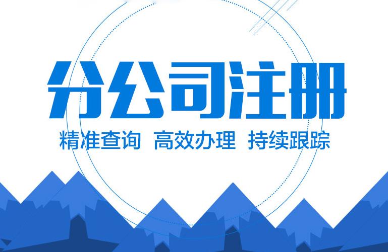 深圳注册分公司流程及资料
